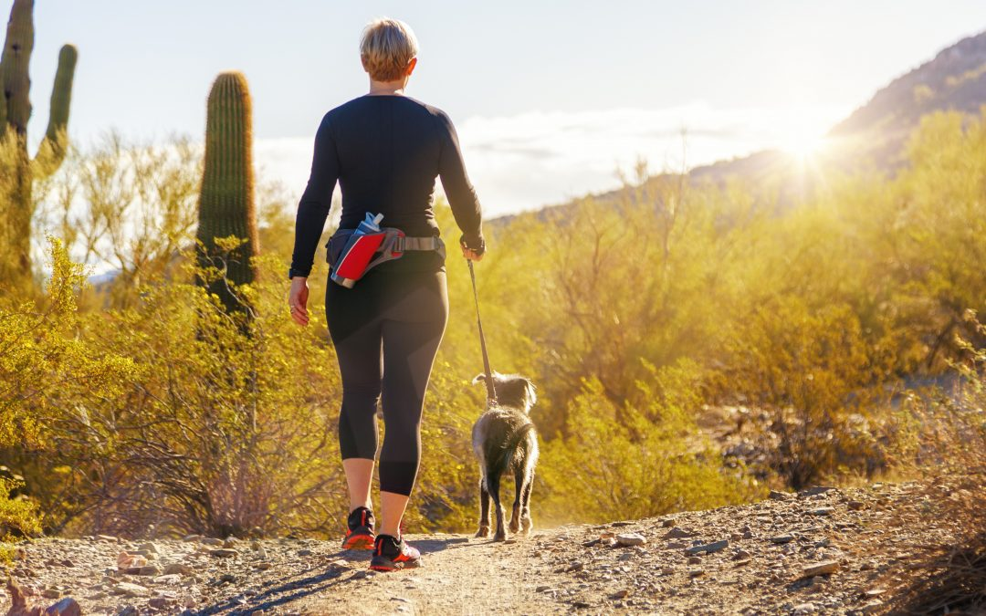 5 Tips for Staying Healthy in the Phoenix Summer Heat